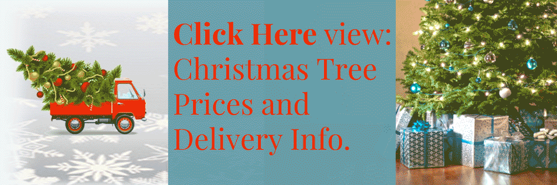 christmas-tree-delivery-truck-banner1