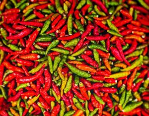 green-chile-denver