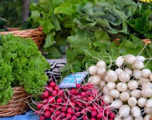 radish-heinies-market
